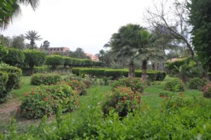 The Gardens of Marrakech