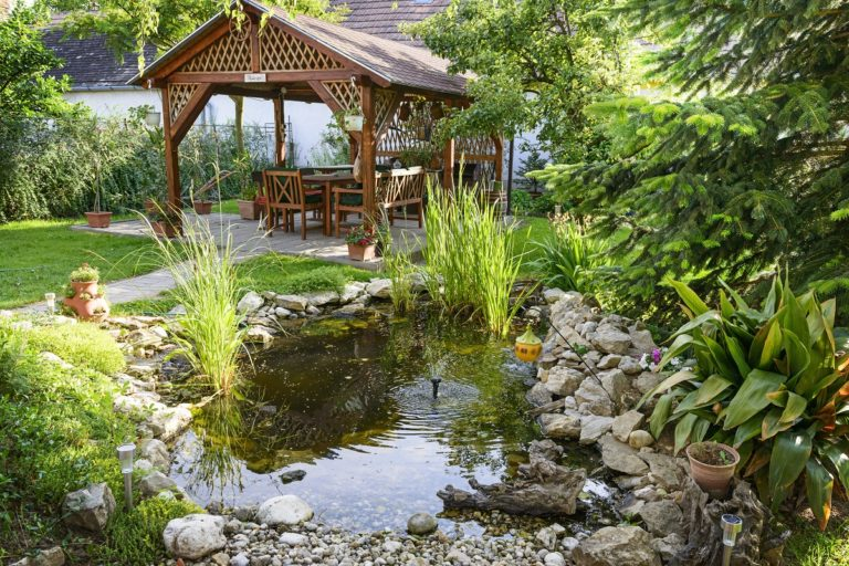 Backyard with pond and cottage