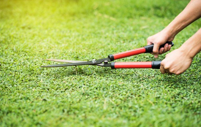 Gardener cutting the grass
