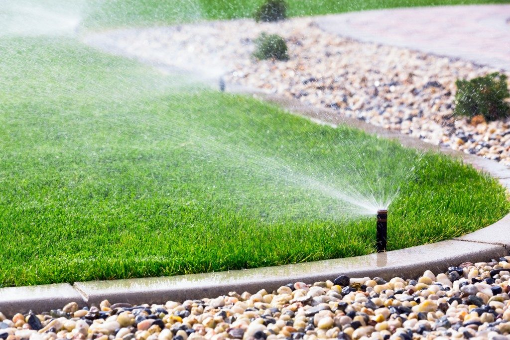 Automatic water sprinkler watering the grass