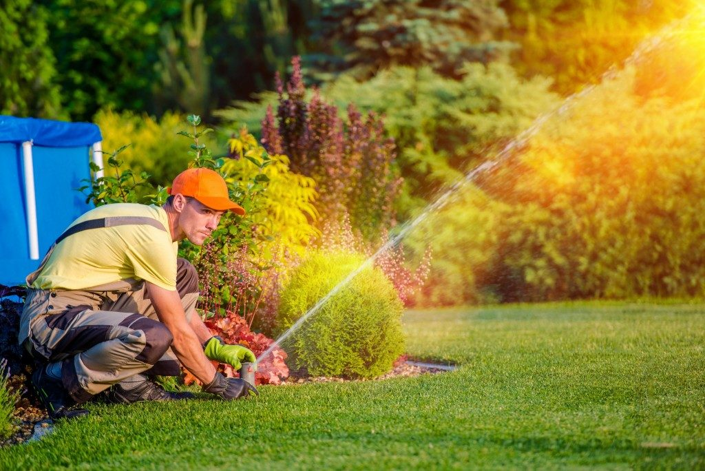Gardener adjusting the water sprinkler pressure