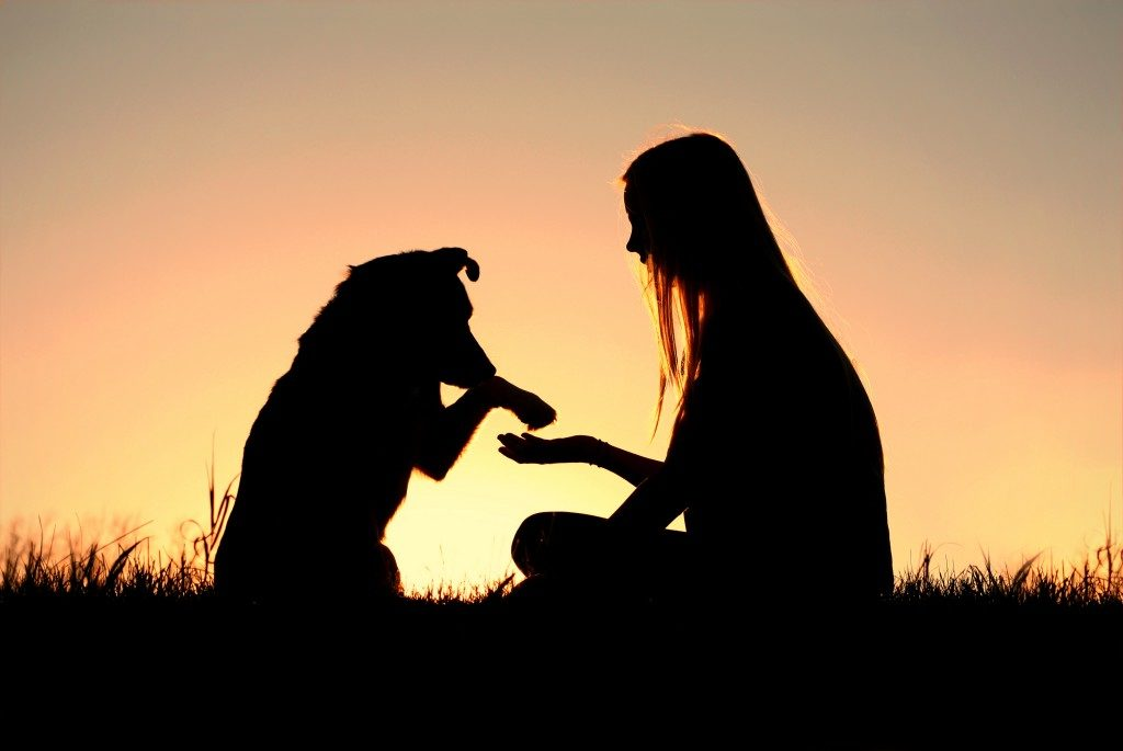 Woman training her pet during sunset