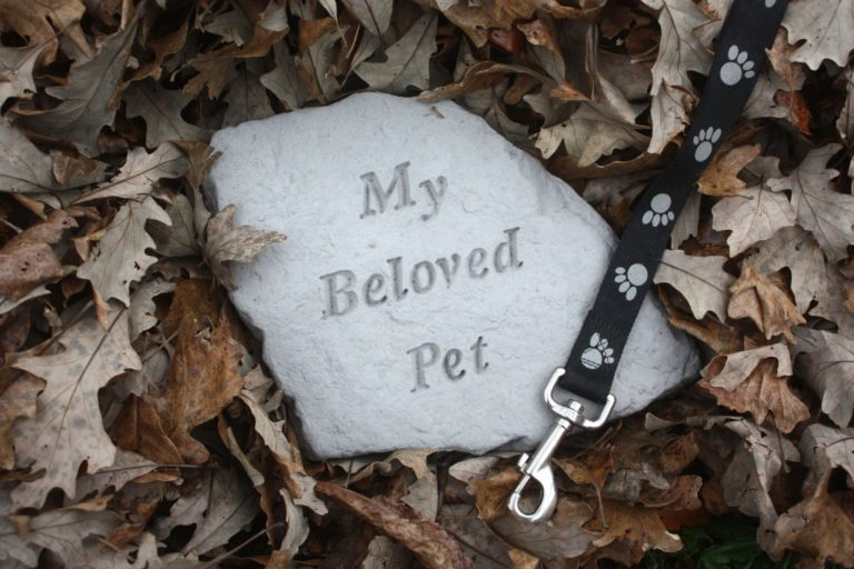 Pet Memorial Stone Surrounded by Fall Leaves
