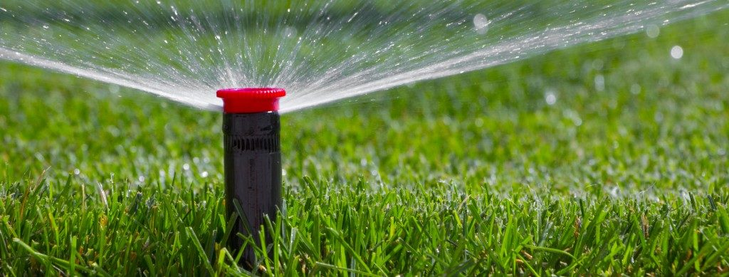 closeup of sprinkler head watering grass